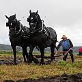 Plowing At The Local Match by Peggy  McDonald