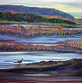 Plum Island Salt Marsh Sunset by Pamela Parsons
