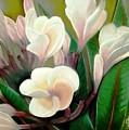 Plumeria by Charito ChatRose Mahilum