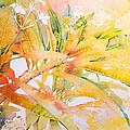 Plumeria Fireworks by Penny Taylor-Beardow