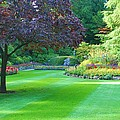 Plush Landscape Bucshart Gardens by Richard Jenkins
