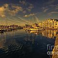 Plymouth Barbican Marina  by Rob Hawkins