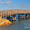 Plymouth Harbor Breakwater by Catherine Reusch Daley