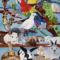Pocket Pets by Debbie LaFrance