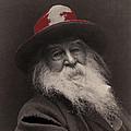 Poet Walt Whitman George Collins Cox Photo 1887-2010 by David Lee Guss