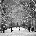 New York City - Poets Walk Winter by Dave Beckerman