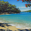 Pohutukawa Nz - Beach And Rangitoto  by Jennifer Cruden