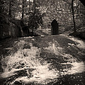 Poinsett Bridge by Kelly Hazel