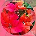 poinsettia Xmas Ball by Joan-Violet Stretch