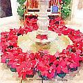 Poinsettias by Shannon Grissom