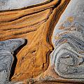 Point Lobos Abstract 5 by Mike Penney