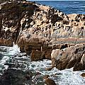 Point Lobos Coast 2 by Mike Penney