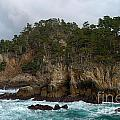 Point Lobos Coastal View by Charlene Mitchell