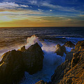 Point Lobos Two by Ingrid Smith-Johnsen