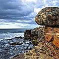 Point Loma   by Diana Powell