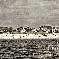 Point Lookout Beach  Vintage by Digital Designs By Dee