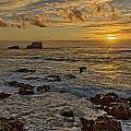 Point Piedras Blancas Sunset Variation by Jim Moss