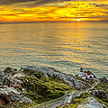 Point Reyes Lighthouse by Chris Austin