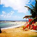 Poipu Beach Kauai Hawaii by Jerome Stumphauzer