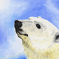 Polar Bear by Annamarie Lombardo