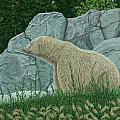 Polar Bear by Michelle Moroz-Chymy