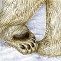 Polar Bear Paw by Laurie OKeefe
