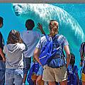 Polar Bear by Rick Selin