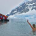 Polar Dip by Tony Beck