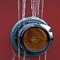 Polar Express by Tom Gari Gallery-Three-Photography