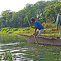 Poling A Dugout Canoe In The Rapti River In Chitwan National Park-nepal by Ruth Hager