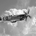 Polish Spitfire Ace Bw by J Biggadike