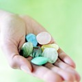 Polished Stones by Ian Hooton/science Photo Library