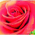 Polka Dot Beautiful Rose by Barbara Griffin