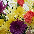 Polka Dot Mums And Carnations by Barbara Griffin