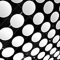 Polka Dots by Ann Horn