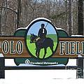 Polo Field by Michael Krek