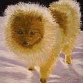 Pom Pom Pup by Nancy Beauchamp