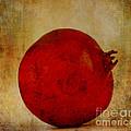 Pomegranate  by Jacklyn Duryea Fraizer