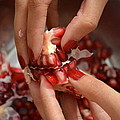 Pomegranate  by N K Sran