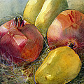 Pomegranates And Pears by Jen Norton