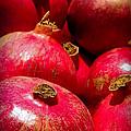 Pomegranates by Karen Wiles