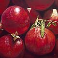 Pomegranates by Patricia Devitt