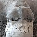 Pompeii Ash Skeleton by Gregory Dyer