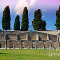 Pompeii Walls And Trees by Phill Petrovic