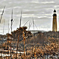 Ponce Inlet Lighthouse From The Dunes by Alice Gipson