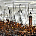 Ponce Inlet Lighthouse In Sea Grass by Alice Gipson