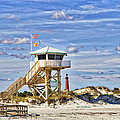 Ponce Inlet Scenic by Alice Gipson