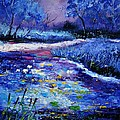 Pond 563111 by Pol Ledent