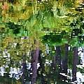 Pond 7 by Jeelan Clark