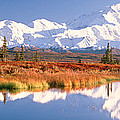 Pond, Alaska Range, Denali National by Panoramic Images